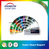 Professional Standard Wall Paint Fande⪞ K Card