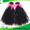 Factory Wholesale Cheap Wild Curly 100% Human Hair Extension