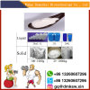 99.5% Raw Steroid Powder Melatonine (73-31-4) for Well Sleep and Whitening