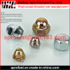 DIN1587 Hex Domed Cap Nuts