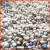 Ammonium Nitrate Fertilizer Pelletizer Machine