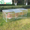 Cold Frame Mini Greenhouse for Young Plants Growing (F262)