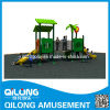 Qilong Produced Outdoor Playground Sets (QL14-070B)