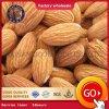 Almonds/Mamra Almonds/Californian Almonds!