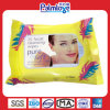 Facial Makeup Remover Wipes, Cleaning Wipes (WW-011B)