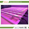 312W LED Lighting Fixture for Professional Plants Factory