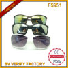 F5951 Quality Fashion Sunglasses Meet Ce UV400