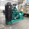 Water Cooling 230V/400V Biogas Generator Low Consumption Generator Set