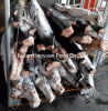 Chinese Supplier of Aquatic Frozen Small Black Shark