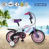 China Children Bike with CE CCC En Certificate Jsk-Gkb-017