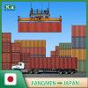 Sea Freight Shipping From Jiangmen to Japan Tokyo / Yokohama / Osaka / Kobe / Nagoya