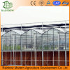 Honey Comb Evaporative Cooling Pad for Cooler Poultry Farm and Greenhouse