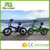 20*4.0 Kenda Brand Tyre Ebike 36V 250W Folding Electric Bike