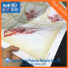 Gloss White PVC Rigid Film for Offset Printing