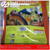 6 Color High Speed Potato Chips Bags Print Machine (CJ886-800F)