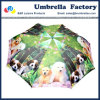 "Large Folding Umbrella 23"" for 2 Person"