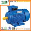 LTP Y2 Series Electric Motor