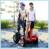 2 Wheel Adult Electric Scooter (ESIII)