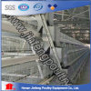 Hot Quality Chicken Cage for Sale Price