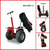 Freego Electric Golf Scooter 2 Wheel Self Balance Scooter with Big Wheels