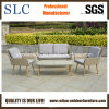Lounge Sofa, Outdoor Furniture (SC-1723)