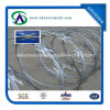 Cbt-60 Hot-DIP Galvanized Razor Wire