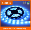 Hot Waterproof High Lumen DC12V SMD5050 LED Strip Light