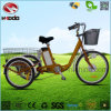 Lithium Battery Cargo Electric Tricycle with Pedal Bike