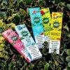 USA Hot Selling Pop/Puff Bar /Puff Plus Vape Pen 280mAh Leakage Proof Vaporizer Electronic Cigarette for Health Vaping
