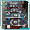 22inch Cruiser Maple Skateboard, Wood Skateboard Longboards
