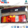 HOWO Spare Parts with SGS Certification (WG9925810002 Genuine Tail Light)