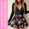 Sexy Fashion Women Office Wear Ladies Dresses Skirts