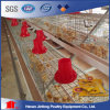 Jaulas Battery Size Poultry Pullet Poultry Cages