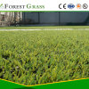 Yarn PE Artificial Lawn for Sports Field (SP-50ST-518-CS)