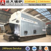 Double Drum 1-10t/H Automatic Coal Fired Steam Boiler