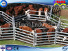 Galvanized Cattle Corral Panel for Australia Market