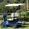Ce Mini Double Seat Electric Golf Cart 36V 1600W with Tops and Big Rear Basket