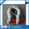 Us Type High Quality Standard Forged Shackle