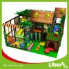 Forest Themed Indoor Soft Playground for Kids