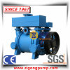 Horizontal Cast Iron Ci Water Liquid Ring Vacuum Pump & Compressor for Mining