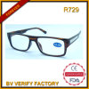 R729 Hotsale Big Frame Plastic Reading Glasses with Metal Deco