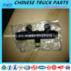 Clutch Master Cylinder for Foton Truck Spare Part (1124116300003)