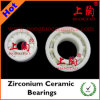 Zirconium Ceramic Bearing