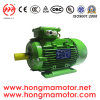 2.2kw 4pole Aluminum Three Phase Induction (100L1-4P-2.2kw)