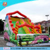 Fireproof PVC Inflatable Water Slide / Inflatable Dry Slides En14960