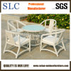 Comfortable Aluminium Outdoor Garden Rattan Furniture (SC-B8959)