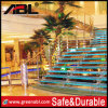 10 Years Quality Guarantee Abl Stainless Steel Staircase (DD004)