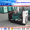 40kVA/30kw Biogas/LNG/CNG/LPG/Natural Gas Generator by CE/ISO Certificates (JY4BTAA3.9G40)