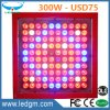 5 Years Warranty Full Spectrum IP67 300W Farming Plant LED Grow Light for Greenhouse