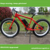 Pedal Assisted Fat MTB Electric Bicycle Made in China